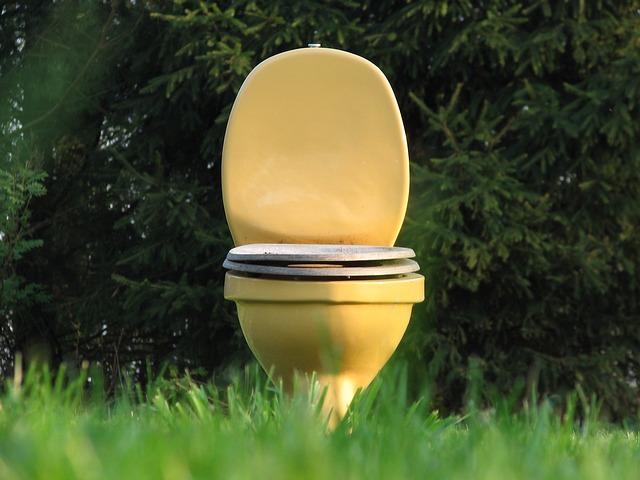 """""""Záchodové"""" problémy"""