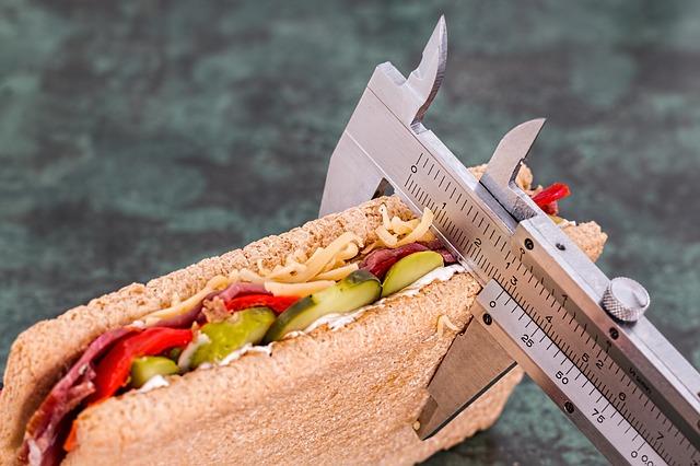 meření kalorií